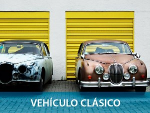 PROD-seg-vehic-clasico-500px